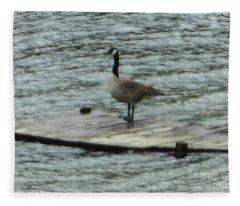 Canada Goose Lake Dock Fleece Blanket