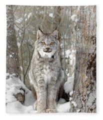 Canadian Wilderness Lynx Fleece Blanket