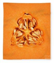 Cantaloupe Melon Inside Fleece Blanket