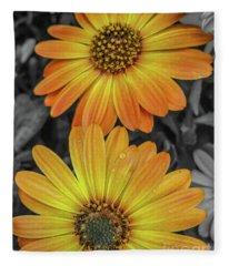Cape Daisy's - Orange Fleece Blanket