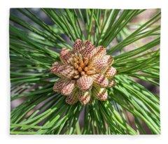 Captivating Pine Fleece Blanket