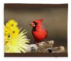 Cardinal And Chrysanthemums Fleece Blanket