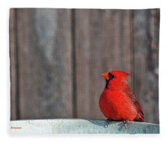 Cardinal Drinking Fleece Blanket