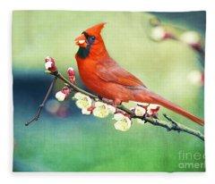 Cardinal On Apricot Branch Fleece Blanket