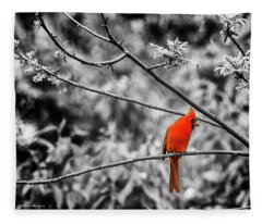 Cardinal... Fleece Blanket