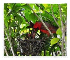 Cardinals Chowtime Fleece Blanket