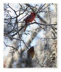 Cardinals In Mossy Tree Fleece Blanket
