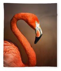 Caribean Flamingo Portrait Fleece Blanket