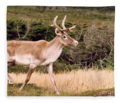 Caribou Fleece Blanket