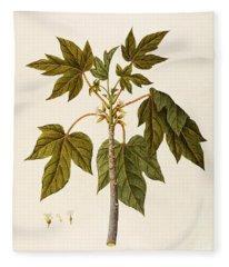 Carica Papaya Fleece Blanket