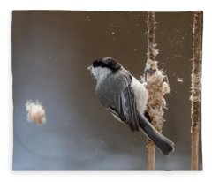 Carolina Chickadee Feeding On Cattail Fleece Blanket