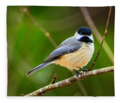 Carolina Chickadee Fleece Blanket