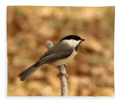 Carolina Chickadee On Branch Fleece Blanket