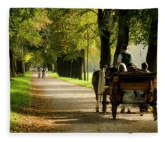 Carriage Ride In Hellbrunn Fleece Blanket