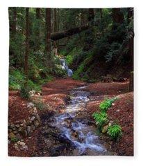 Castro Canyon In Big Sur Fleece Blanket