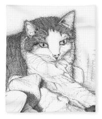 Domestic Cat Fleece Blanket