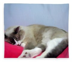 Cat Nap Fleece Blanket
