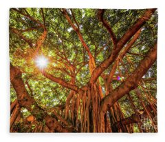 Catch A Sunbeam Under The Banyan Tree Fleece Blanket