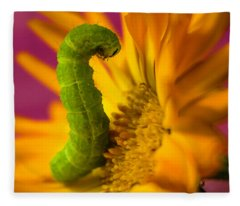 Caterpillar In Flower Fleece Blanket