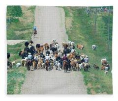 Cattle Drive Fleece Blanket