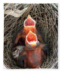 Cavernous Cardinals Fleece Blanket