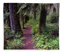 Cedar Creek Trail #3 Fleece Blanket