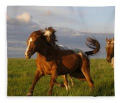 Chargers Fleece Blanket