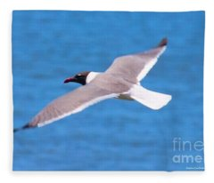 Charleston Wildlife. Seagull Fleece Blanket