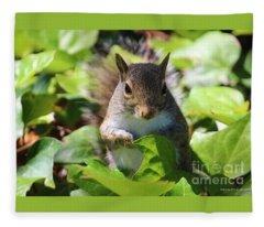 Charleston Wildlife. Squirrel Fleece Blanket