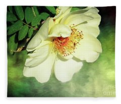 Charming Fleece Blanket