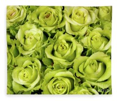 Chartreuse Colored Roses Fleece Blanket