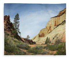 Checkerboard Mesa Fleece Blanket