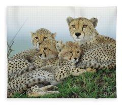 Cheetah And Her Cubs Fleece Blanket