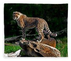 Cheetah Cub Finds Her Pride Rock Fleece Blanket