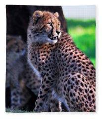 Cheetah Cub Fleece Blanket