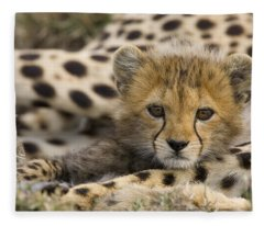 Cheetah Cub Portrait Fleece Blanket