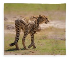 Cheetah Fleece Blanket