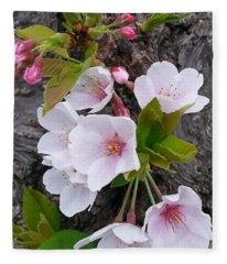 Cherry Blossoms Growing On Tree Trunk Fleece Blanket