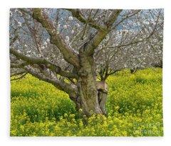Cherry Orchard 8 Fleece Blanket