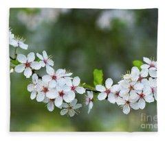 Cherry Plum Blossom In Spring Fleece Blanket