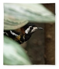 Chestnut-backed Thrush Fleece Blanket