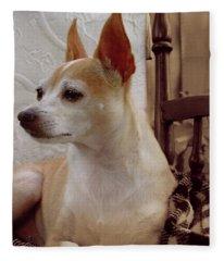 Chihuahua Chiqui Portrait 2 Fleece Blanket
