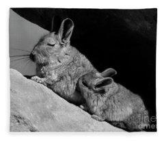 Chile_4-5 Fleece Blanket