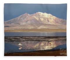 Chilean Flamingo At Lake Chungara On A Stormy Afternoon Fleece Blanket