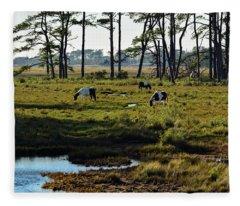 Chincoteague Ponies Fleece Blanket