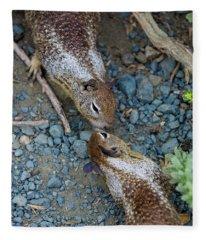 Chipmunk Love Fleece Blanket