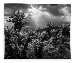 Cholla Cactus Garden Bathed In Sunlight In Black And White Fleece Blanket