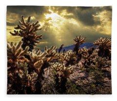 Cholla Cactus Garden Bathed In Sunlight In Joshua Tree National Park Fleece Blanket