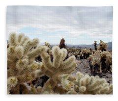 Cholla Cactus Garden Landscape II Fleece Blanket