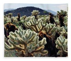 Cholla Teddy Bear Cactus Garden Art Fleece Blanket